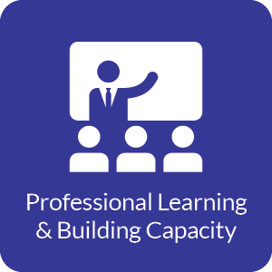 professional learning & building capacity