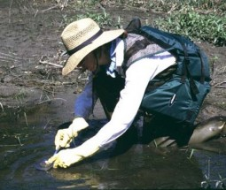 Photo of Barb Eikenberry doing water testing!